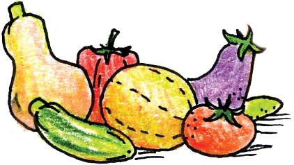גינת ירקות קיץ - על שתילה השקיה ולמה צריך להדלות אותם.