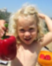פירות קיץ 4.jpg
