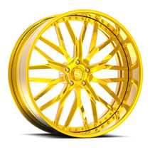 Savini-DIAMOND-C2-5-Gold.jpg