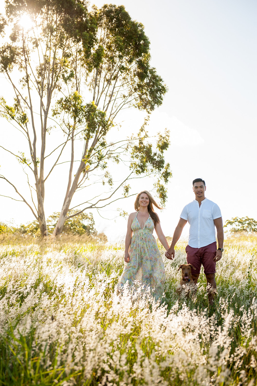 Jay Brosnan Photography | Sunshine Coast Wedding Photographer | Brisbane Wedding Photographer | Jay Brosnan Photography | JBP | Sunshine Coast Portrait Photographer | Brisbane Portrait Photographer | Couples Photographer | Engagement Shoot |