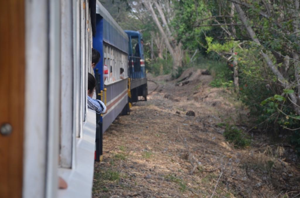Viaje en tren 098