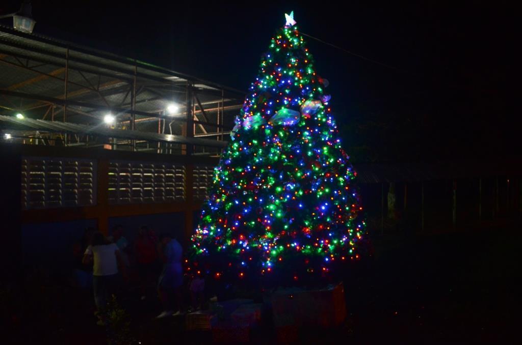 Festival Navidad 131