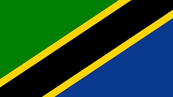 タンザニア スノートップ Tanzania Snowtop