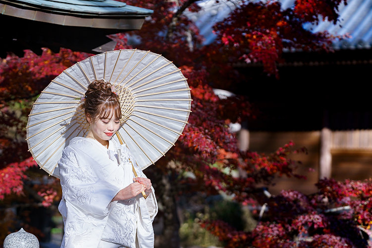 location_kimono_top.jpg