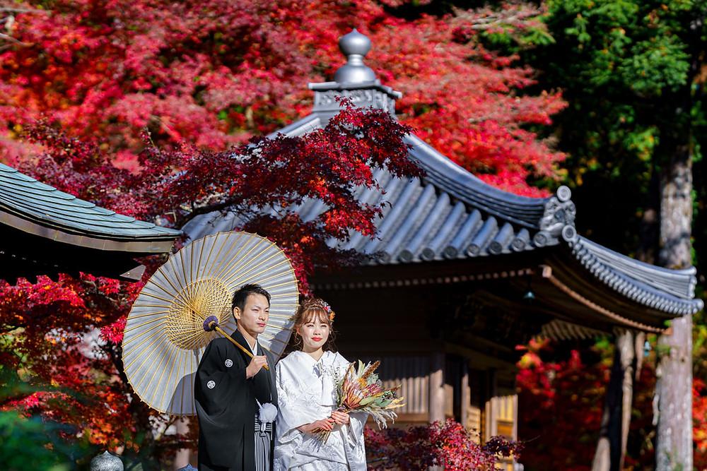 浜松のカメラマンが撮影した法多山尊永寺での紅葉と和装ウエディング前撮りの写真。