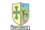 Ansty Logo.png
