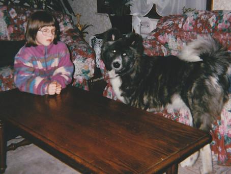 Hoe ik als hondenfluisteraar 'mijn lesje leerde'