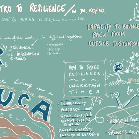 Retour sur le Resilience Café No. 1: An Introduction to Resilience