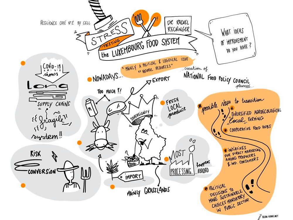 Graphiy recording about food-system luxembourg