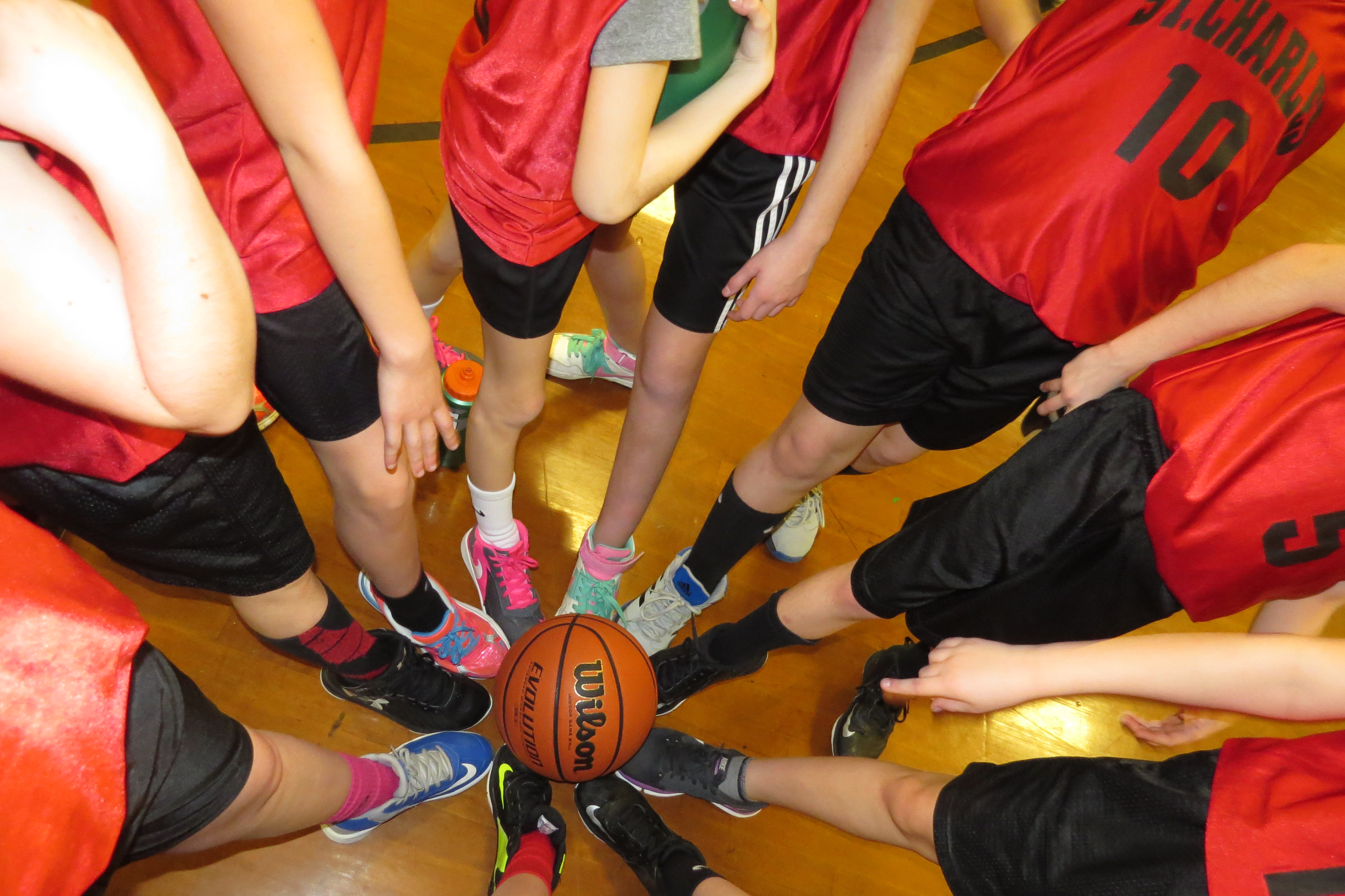 scbhoops-home