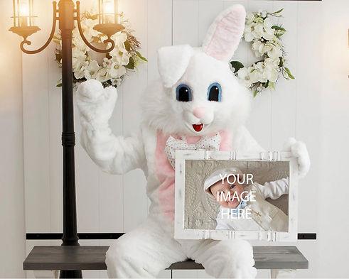 Bunny_landscape store cover.jpg
