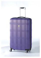 Professional BioMat Travel/Storage Hard Shell Purple Case