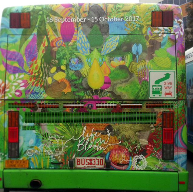 Back of bus