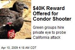 40k-reward-offered-for-condor-shooter.jpeg