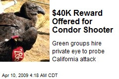 A REAL ACE VENTURA IS HIRED TO FIND CONDOR SHOOTER.$40K