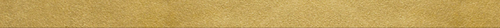 gold strip.png