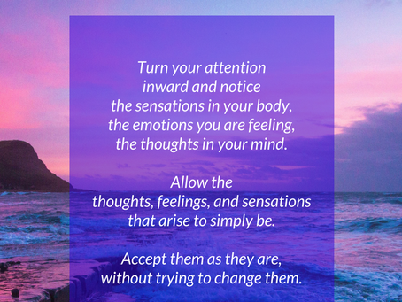 Mindful Moment: Turn Your Attention Inward...