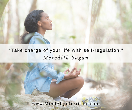 Take charge with self-regulation.png