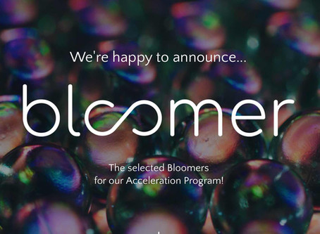 Bloomer selects Lunch.Co to its Accelerator Program!
