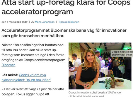 Fri Köpenskap reports on Coops selection of Lunch.Co to the Bloomer's Accelerator Program
