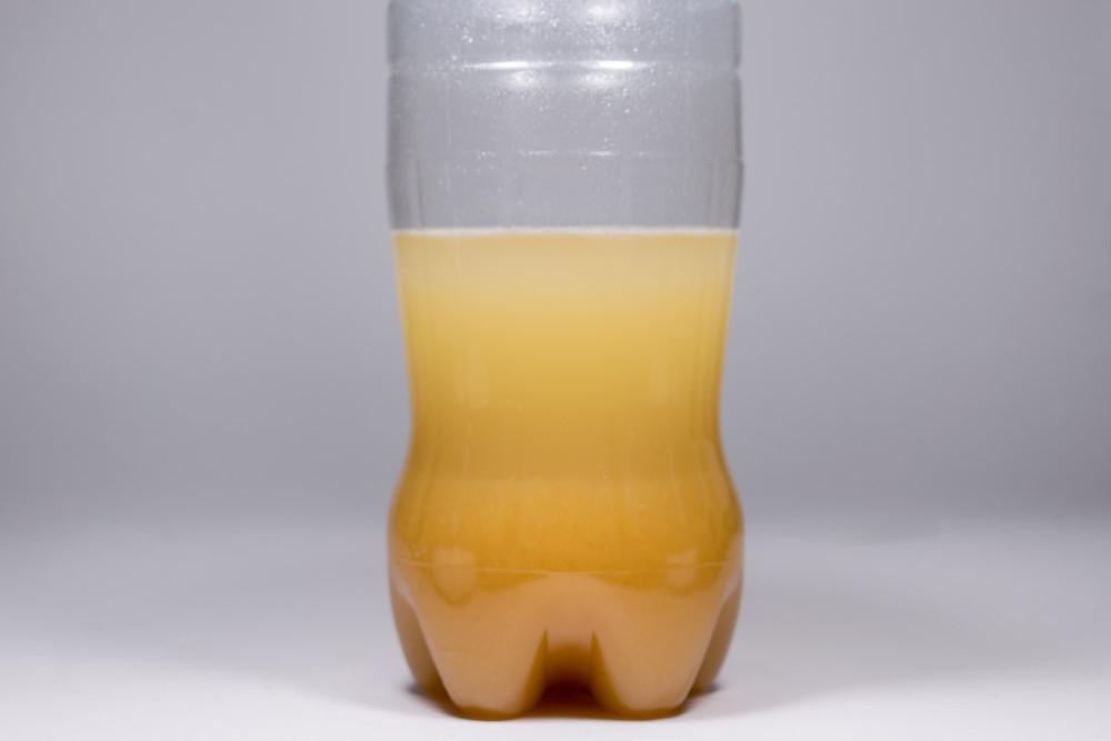 Πως κάνουμε yeast water με χουρμάδες