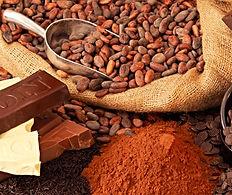 Σοκολάτες κουβερτούρες πραλίνα κακάο