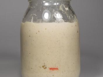 Πως κάνουμε φυσικό προζύμι με αλεύρι και νερό