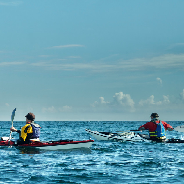 Sea Kayaking St Kilda
