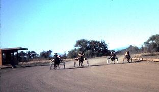 1982 sulky racing