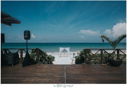 Destination Weddings! (Mexico 2017)