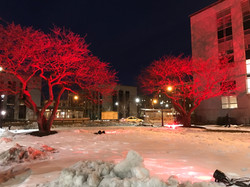 Northwestern University Lighting