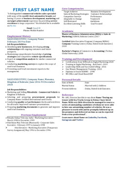One Page Professional CV