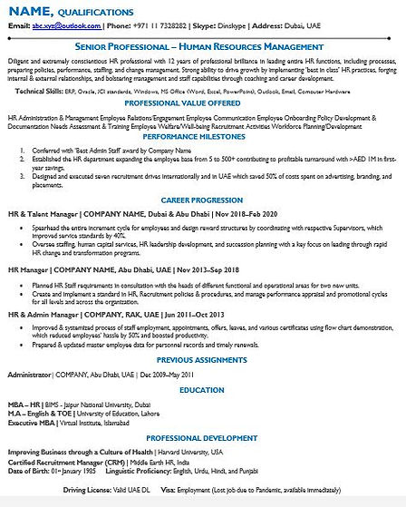Simple and Professional CV sample 2