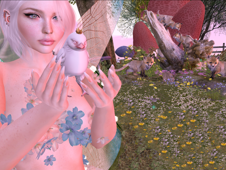 a faerie and a birb
