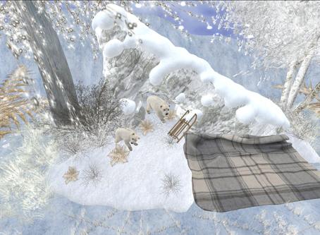 Winter, finally!