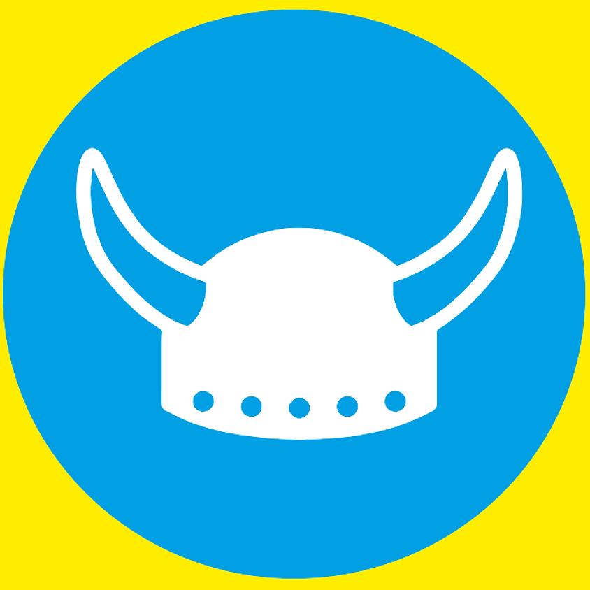 Les vikings et les satellites