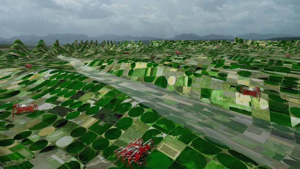 Cofco Farms_100.jpg
