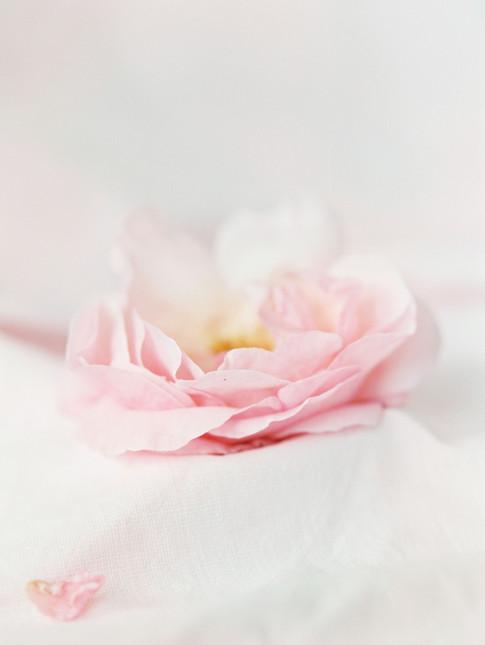 La Fille en Fleur