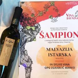 In_Sylvis_-_malvazija_istarska_-_šampion