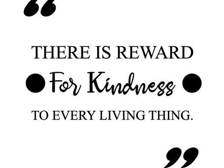 Kindness is Magic...
