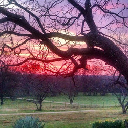 #Sunrise in #Texas_#ranch #rancho #countrylife #country #rural