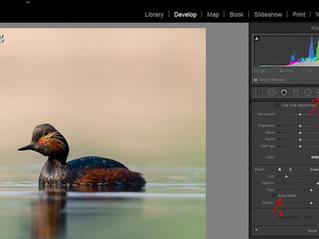 Very quick Lightroom adjustment brush tip