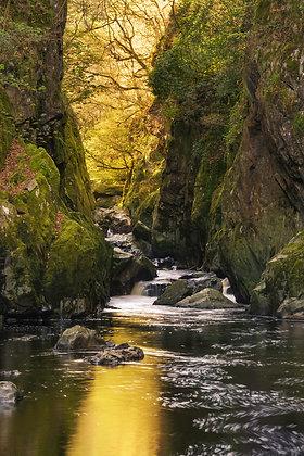 """Autumns golden light on Snowdonias """"fairy glen gorge"""""""