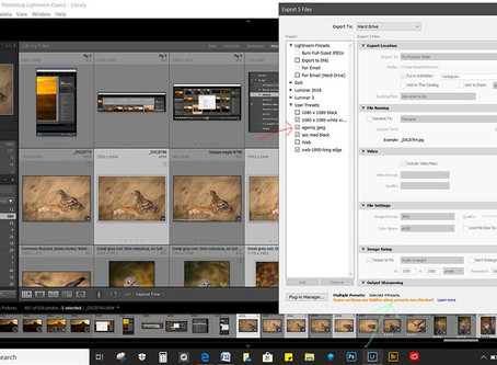 Batch Process for export in Lightroom 2020