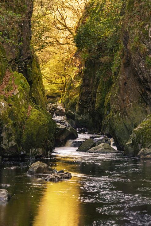 Fairy glen gorge, daybreak in spring