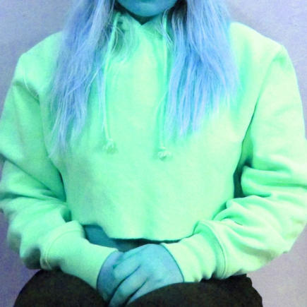 Champion Sweatshirt (Filtered Color)
