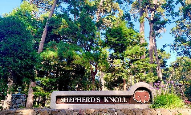 Shepherd's Knoll Gate.jpg