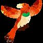 oiseau coloré