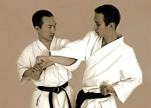 Jujitsu à Mèze