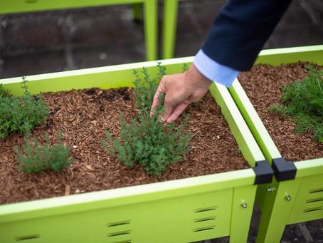 活化閒置空間 成為城市耕作場所